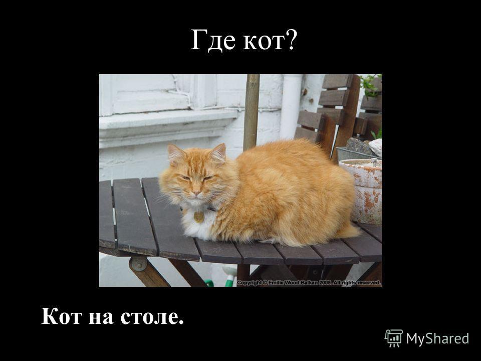 Где кот? Кот на столе.
