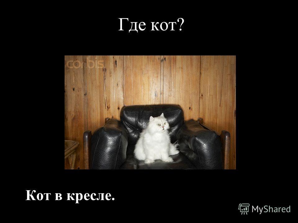 Где кот? Кот в кресле.