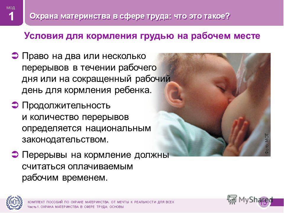 Условия для кормления грудью на рабочем месте 15 Право на два или несколько перерывов в течении рабочего дня или на сокращенный рабочий день для кормления ребенка. Продолжительность и количество перерывов определяется национальным законодательством.