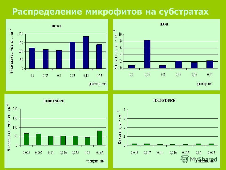 Распределение микрофитов на субстратах