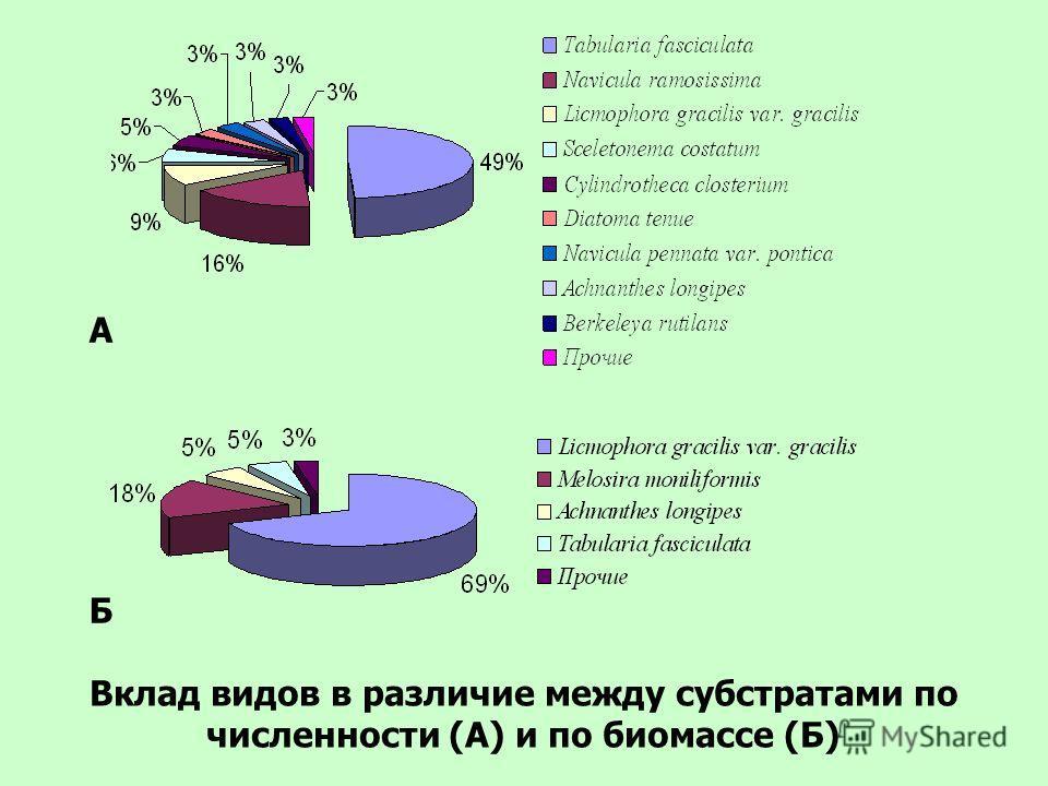 А Б Вклад видов в различие между субстратами по численности (А) и по биомассе (Б)