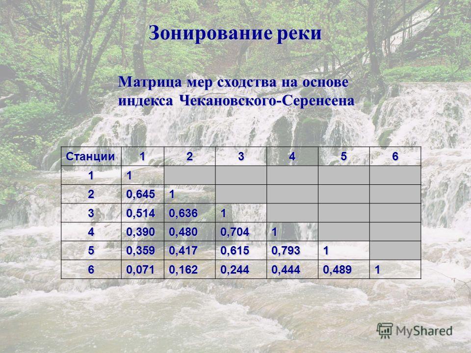 Зонирование реки Матрица мер сходства на основе индекса Чекановского-Серенсена Станции123456 1 1 2 0,6451 3 0,5140,6361 4 0,3900,4800,7041 5 0,3590,4170,6150,7931 6 0,0710,1620,2440,4440,4891