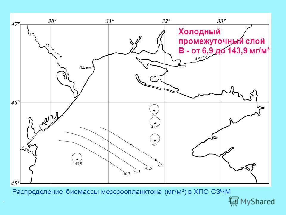 Распределение биомассы мезозоопланктона (мг/м³) в ХПС СЗЧМ. Холодный промежуточный слой В - от 6,9 до 143,9 мг/м³
