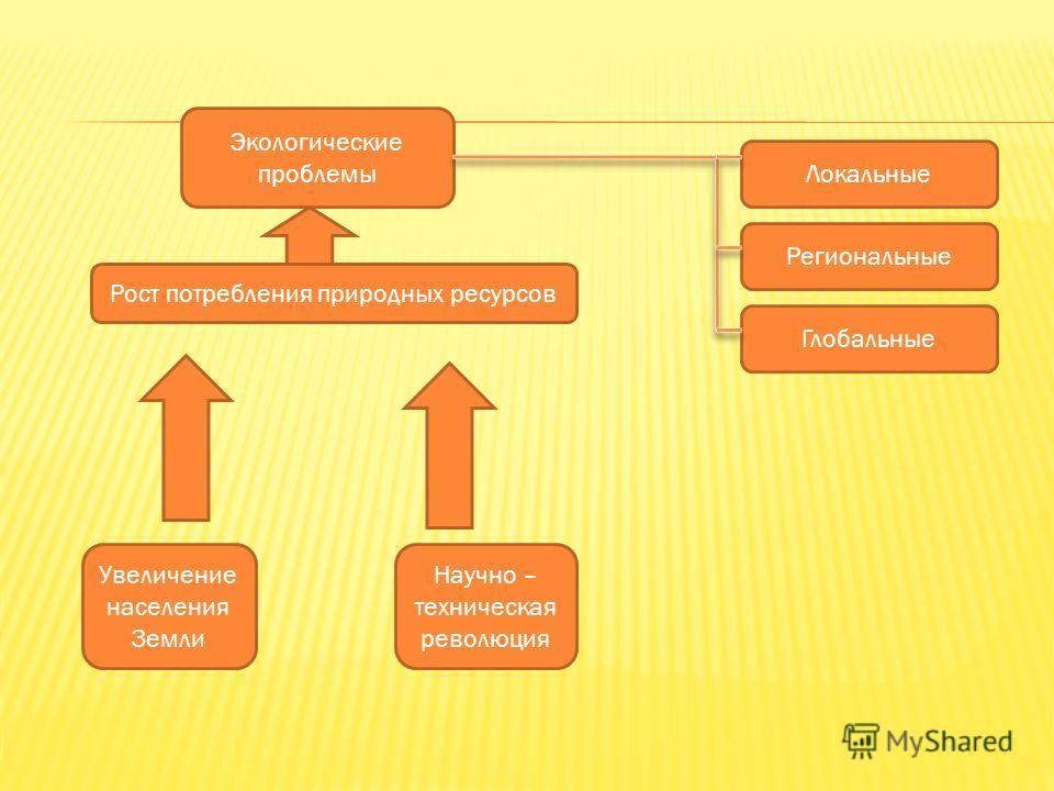 Экологические проблемы Локальные Региональные Глобальные Рост потребления природных ресурсов Увеличение населения Земли Научно – техническая революция