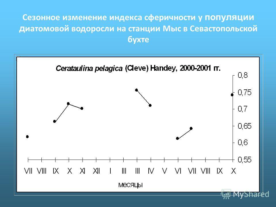 Сезонное изменение индекса сферичности у популяции д иатомовой водоросли на станции Мыс в Севастопольской бухте
