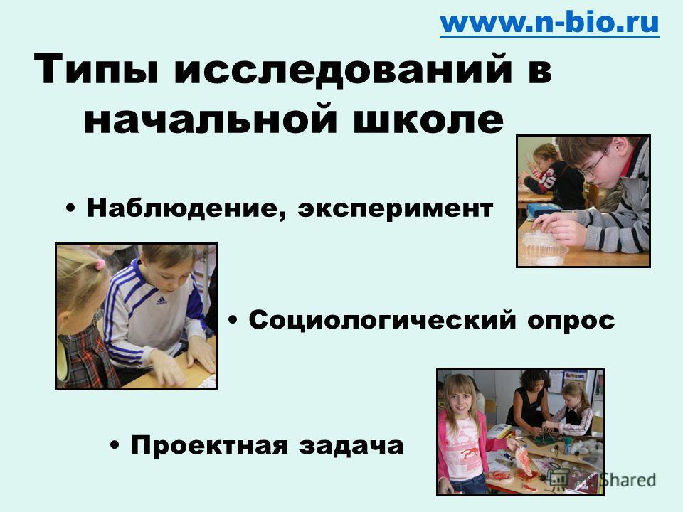 Вопрос превращается в гипотезу www.n-bio.ru Вася предположил, что… Мы считаем, что…