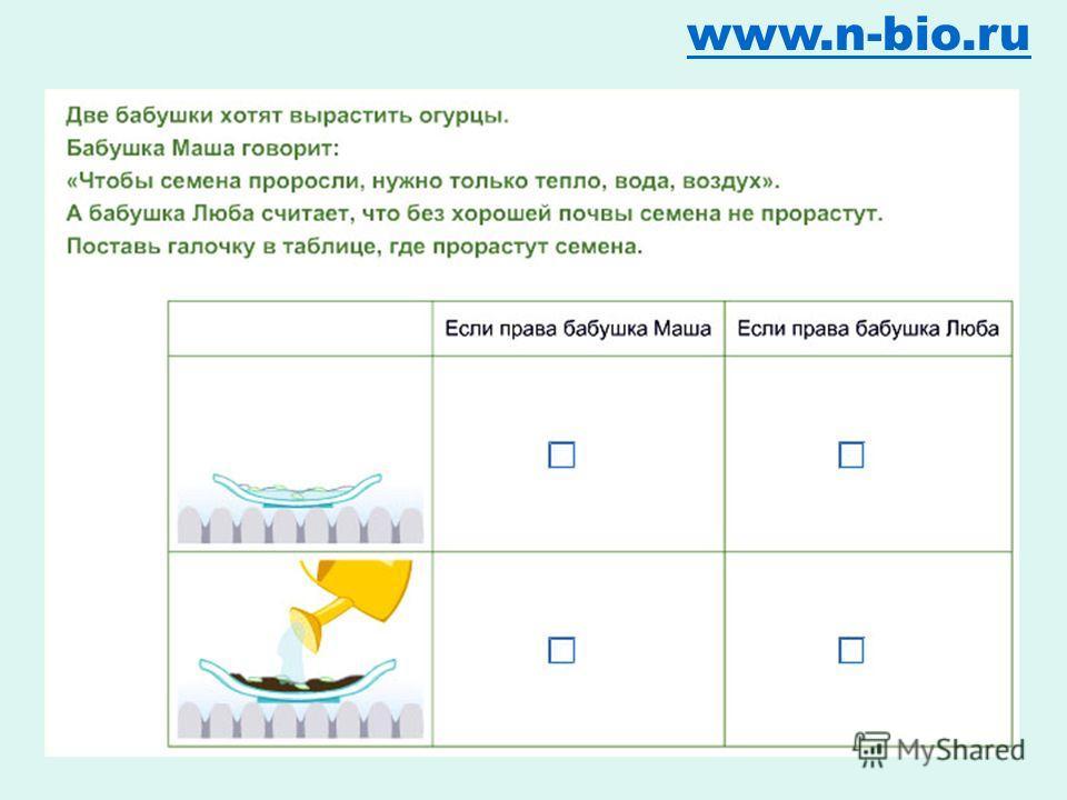 Наблюдение, эксперимент www.n-bio.ru Типы исследований в начальной школе Социологический опрос Проектная задача