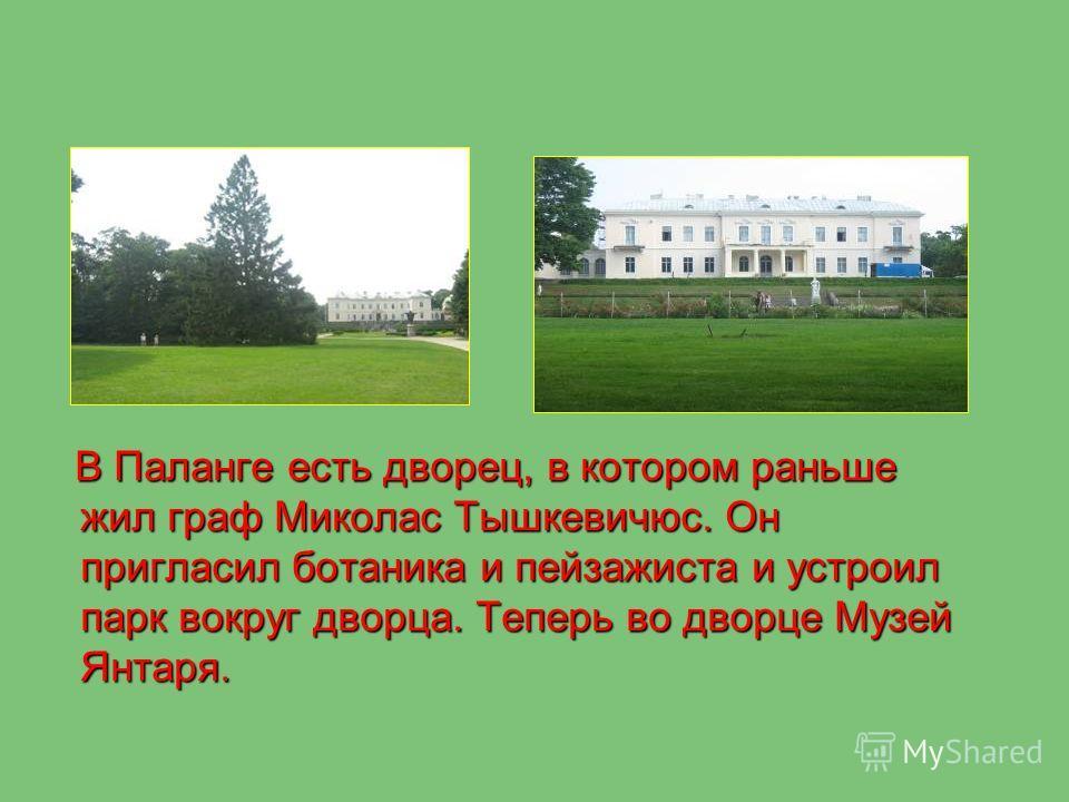 В Паланге есть дворец, в котором раньше жил граф Миколас Тышкевичюс. Он пригласил ботаника и пейзажиста и устроил парк вокруг дворца. Теперь во дворце Музей Янтаря.