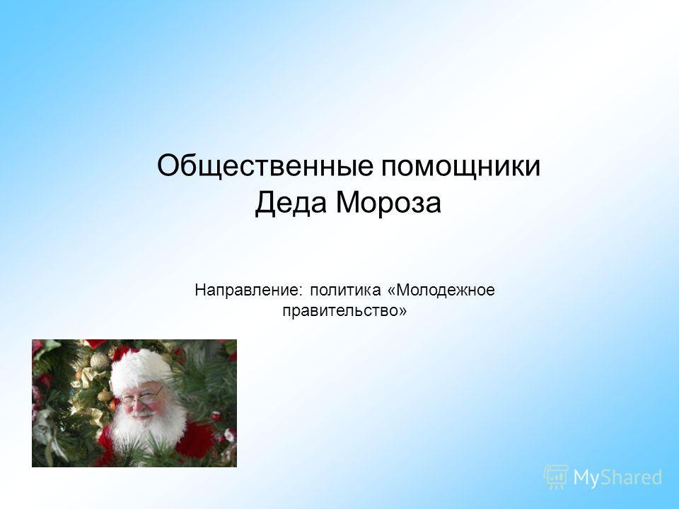 Общественные помощники Деда Мороза Направление: политика «Молодежное правительство»