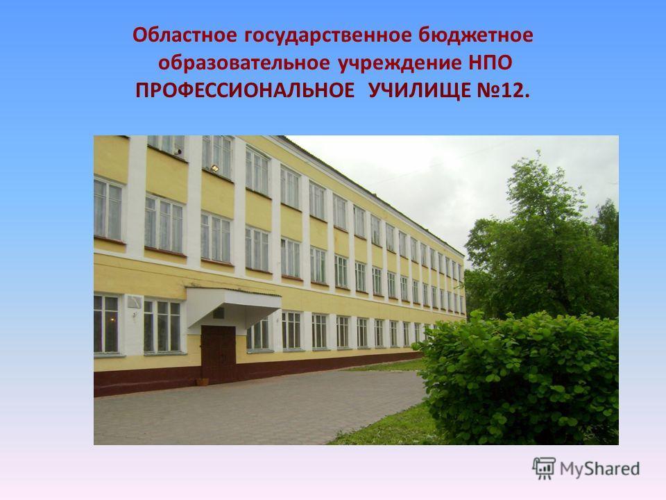 Областное государственное бюджетное образовательное учреждение НПО ПРОФЕССИОНАЛЬНОЕ УЧИЛИЩЕ 12.