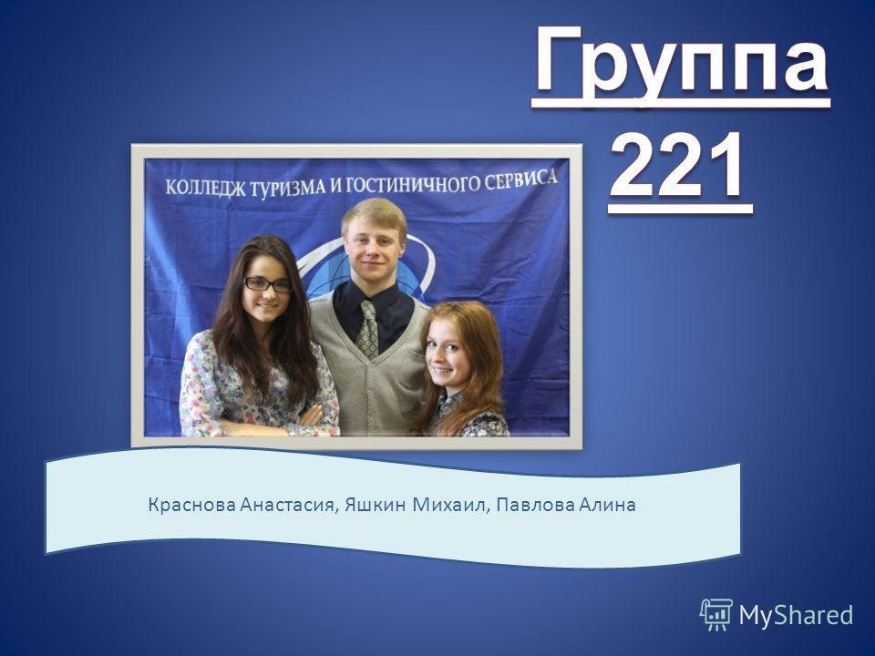 Краснова Анастасия, Яшкин Михаил, Павлова Алина