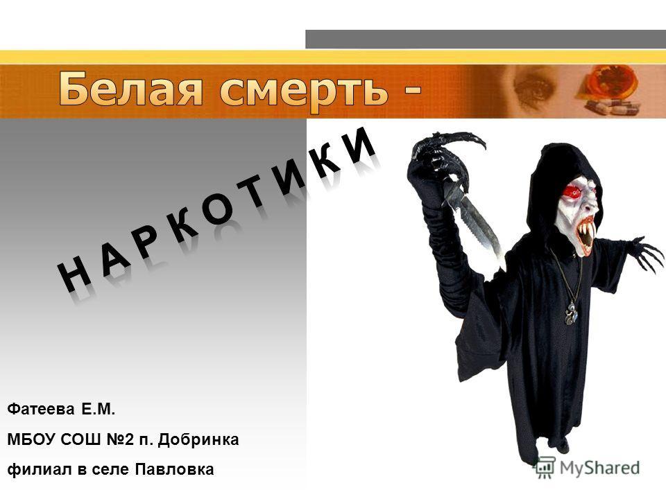 Фатеева Е.М. МБОУ СОШ 2 п. Добринка филиал в селе Павловка
