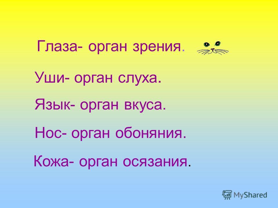 Глаза- орган зрения. Уши- орган слуха. Язык- орган вкуса. Нос- орган обоняния. Кожа- орган осязания.