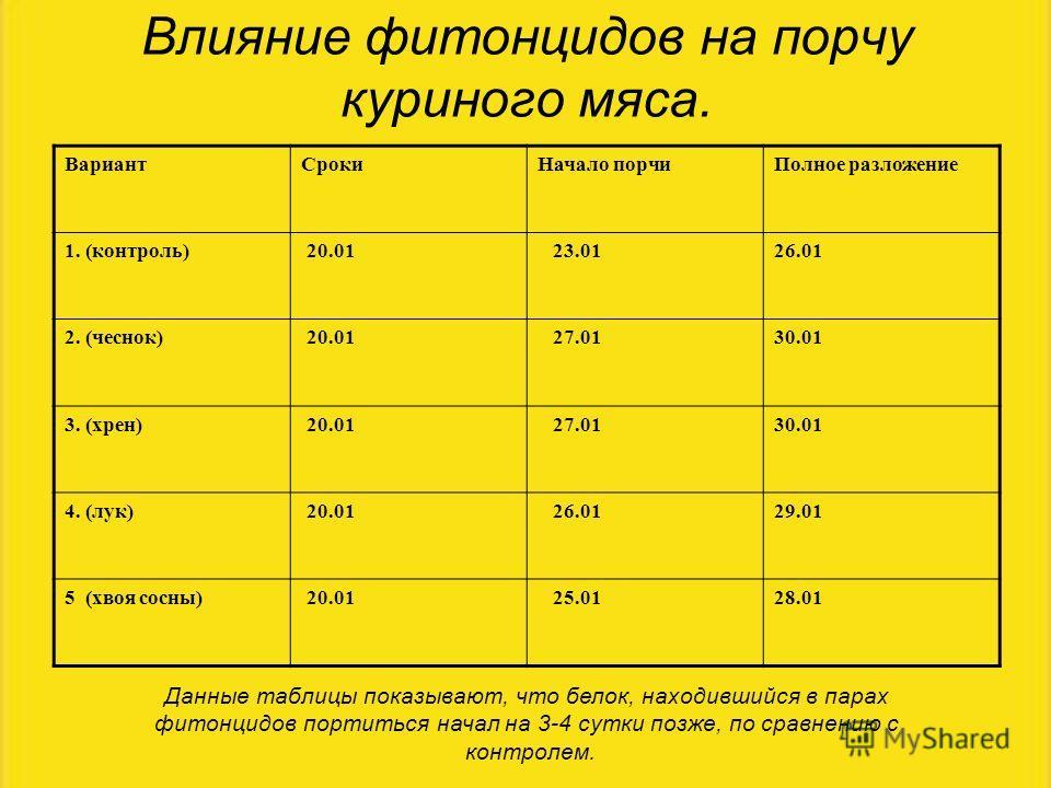 Влияние фитонцидов на порчу куриного мяса. Данные таблицы показывают, что белок, находившийся в парах фитонцидов портиться начал на 3-4 сутки позже, по сравнению с контролем. ВариантСрокиНачало порчиПолное разложение 1. (контроль) 20.01 23.0126.01 2.