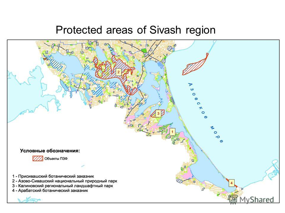 Protected areas of Sivash region