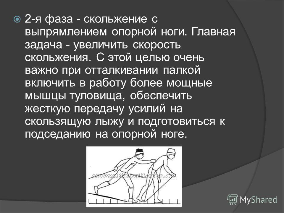 2-я фаза - скольжение с выпрямлением опорной ноги. Главная задача - увеличить скорость скольжения. С этой целью очень важно при отталкивании палкой включить в работу более мощные мышцы туловища, обеспечить жесткую передачу усилий на скользящую лыжу и