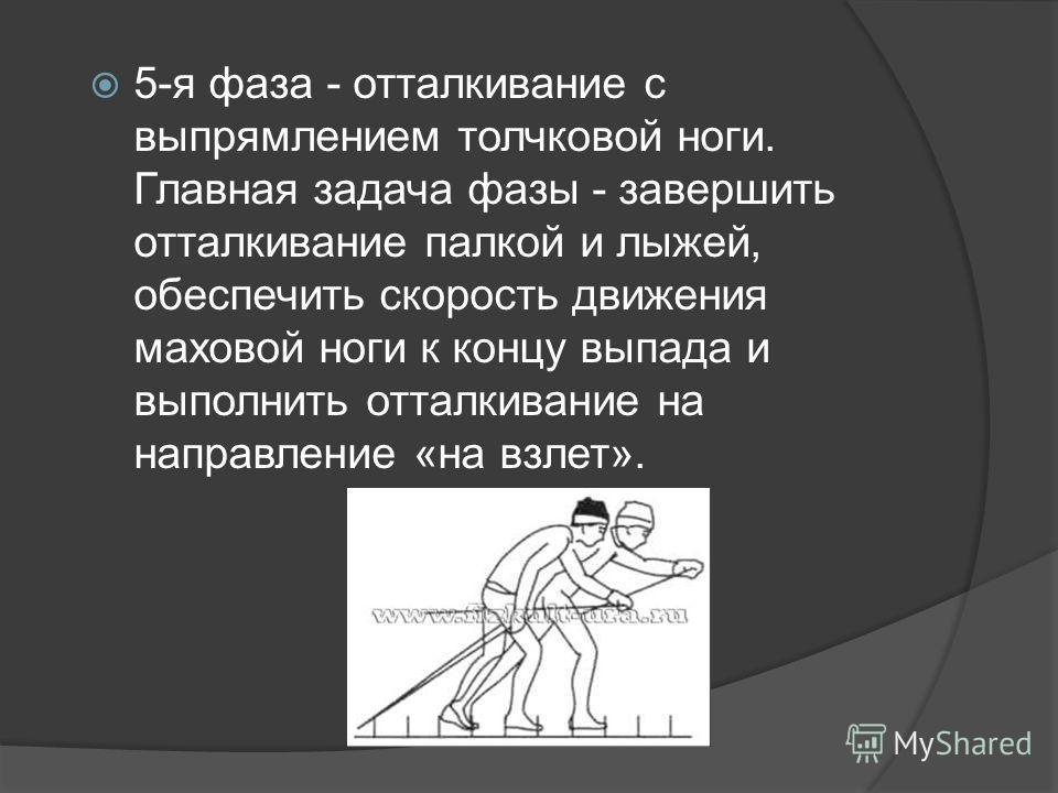 5-я фаза - отталкивание с выпрямлением толчковой ноги. Главная задача фазы - завершить отталкивание палкой и лыжей, обеспечить скорость движения маховой ноги к концу выпада и выполнить отталкивание на направление «на взлет».
