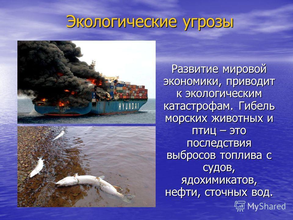 Экологические угрозы Развитие мировой экономики, приводит к экологическим катастрофам. Гибель морских животных и птиц – это последствия выбросов топлива с судов, ядохимикатов, нефти, сточных вод.