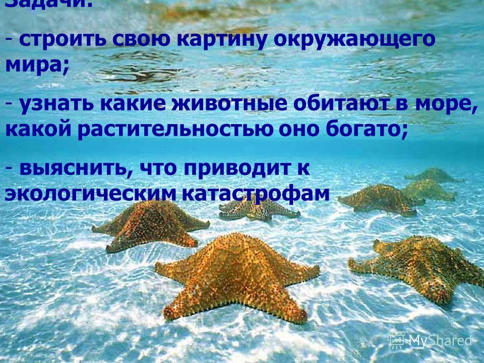 Задачи: - строить свою картину окружающего мира; - узнать какие животные обитают в море, какой растительностью оно богато; - выяснить, что приводит к экологическим катастрофам