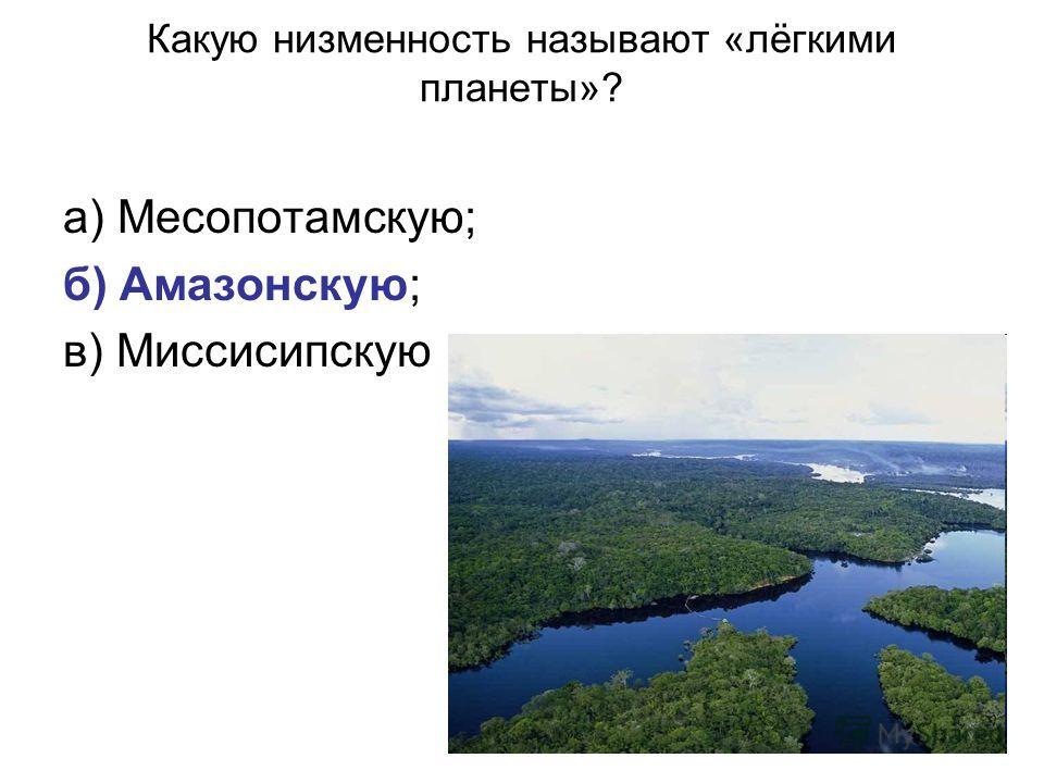 Какую низменность называют «лёгкими планеты»? а) Месопотамскую; б) Амазонскую; в) Миссисипскую