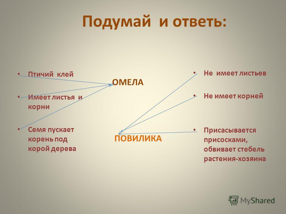 Подумай и ответь: ОМЕЛА Птичий клей Имеет листья и корни Семя пускает корень под корой дерева ПОВИЛИКА Не имеет листьев Не имеет корней Присасывается присосками, обвивает стебель растения-хозяина