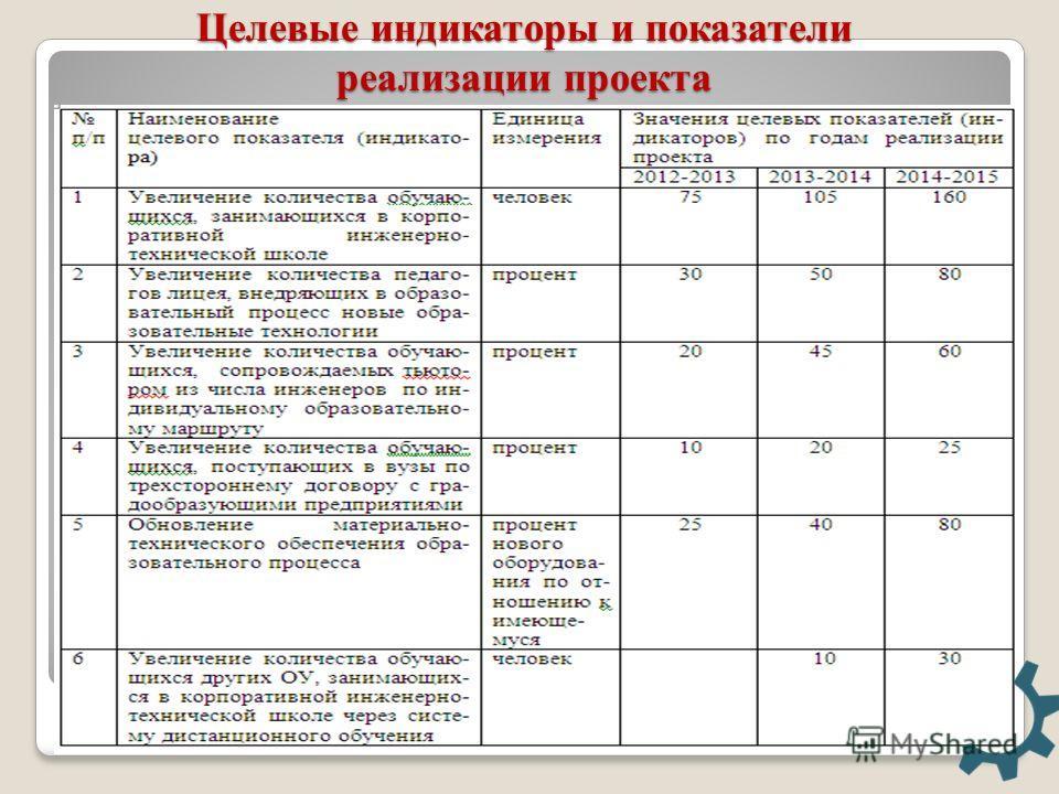 Целевые индикаторы и показатели реализации проекта