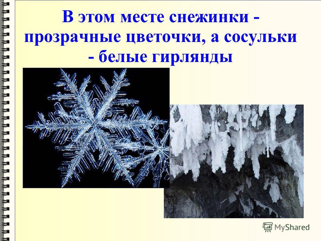 В этом месте снежинки - прозрачные цветочки, а сосульки - белые гирлянды