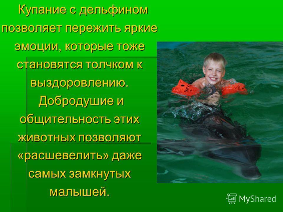 Купание с дельфином Купание с дельфином позволяет пережить яркие эмоции, которые тоже становятся толчком к выздоровлению. Добродушие и Добродушие и общительность этих животных позволяют «расшевелить» даже самых замкнутых малышей.