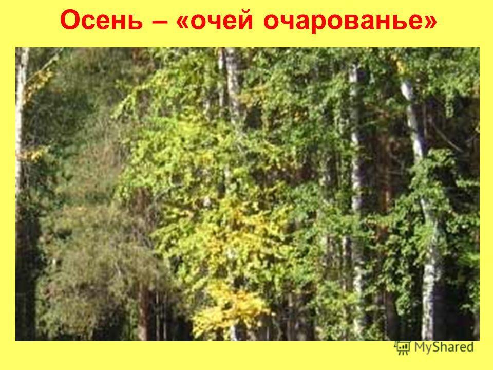 Осень – «очей очарованье»