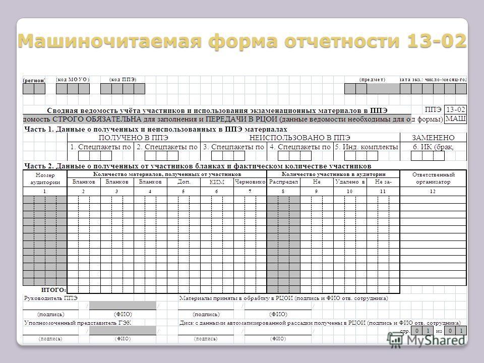 Машиночитаемая форма отчетности 13-02