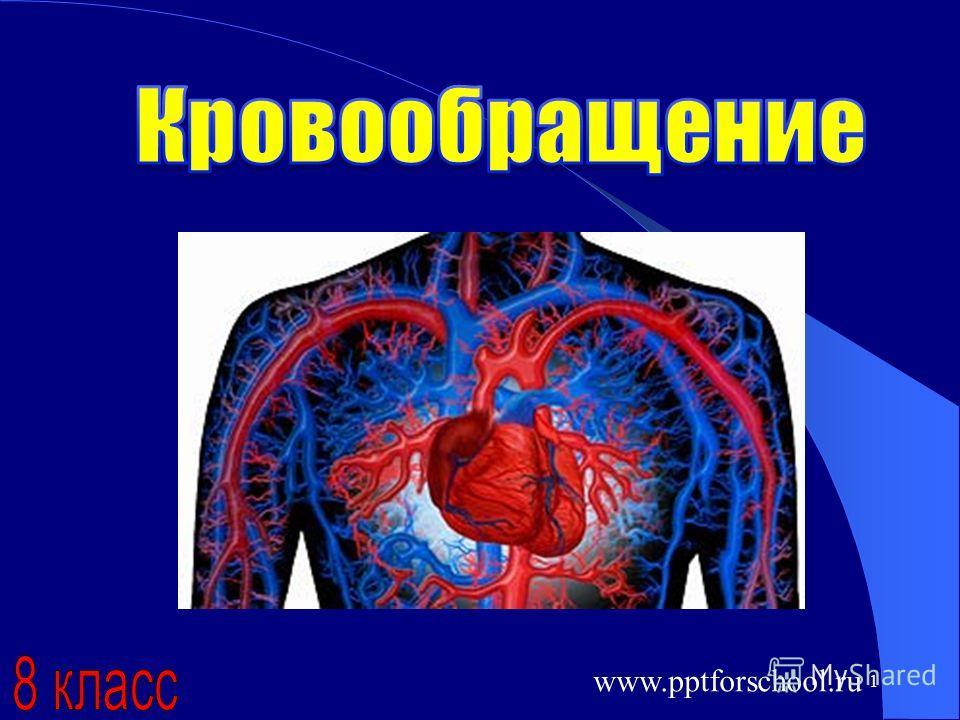 1 www.pptforschool.ru