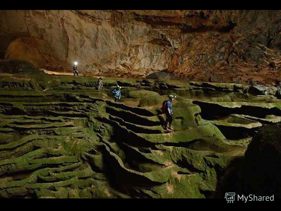 Один из участников этой экспедиции, 52-летний фотограф Карстен Питер (Carsten Peter), проведший 2 недели в этих пещерах, говорит: В течение моей 35-летней карьеры фотографа и исследователя, я побывал в таком количестве пещер, что сбился со счёта. Но