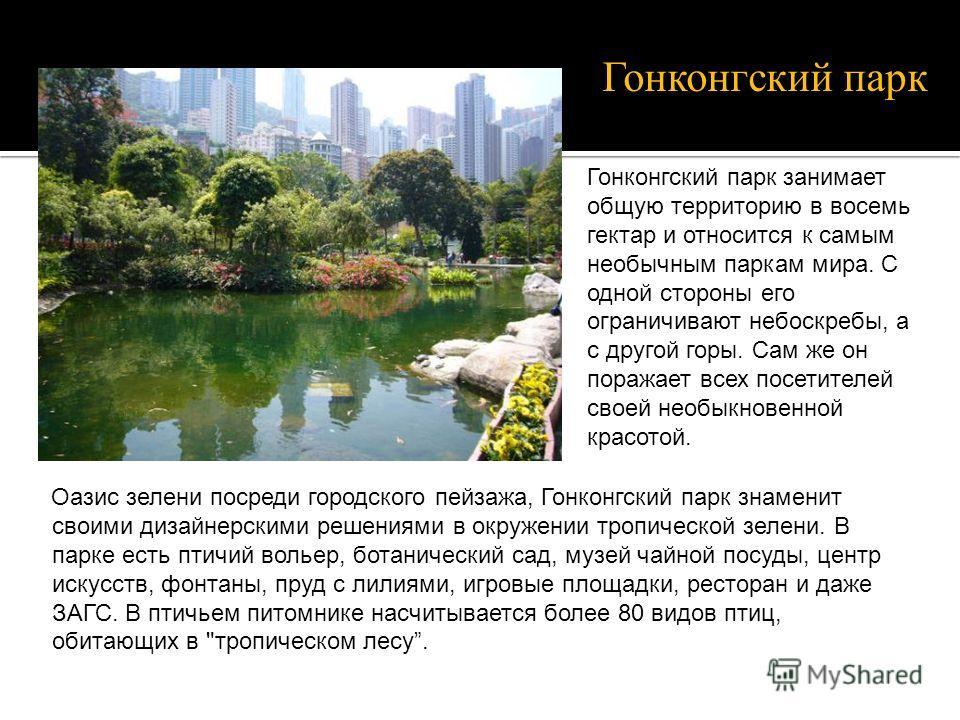 Оазис зелени посреди городского пейзажа, Гонконгский парк знаменит своими дизайнерскими решениями в окружении тропической зелени. В парке есть птичий вольер, ботанический сад, музей чайной посуды, центр искусств, фонтаны, пруд с лилиями, игровые площ