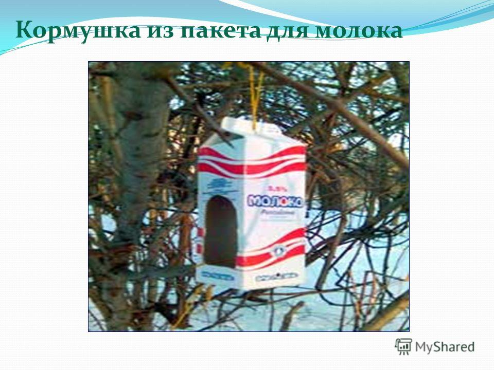 Кормушка из пакета для молока