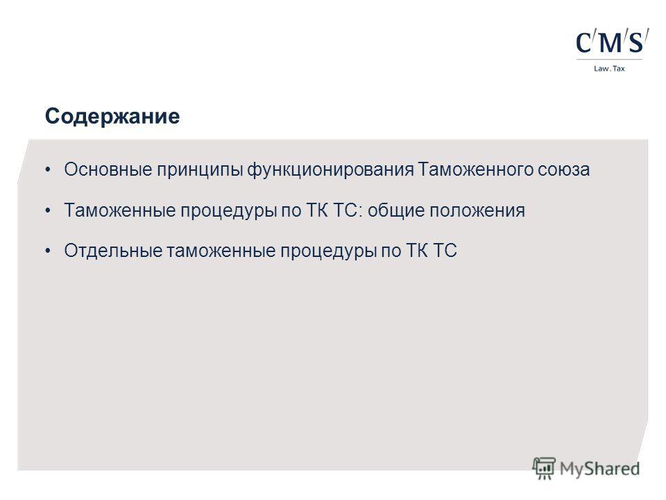 Содержание Основные принципы функционирования Таможенного союза Таможенные процедуры по ТК ТС: общие положения Отдельные таможенные процедуры по ТК ТС