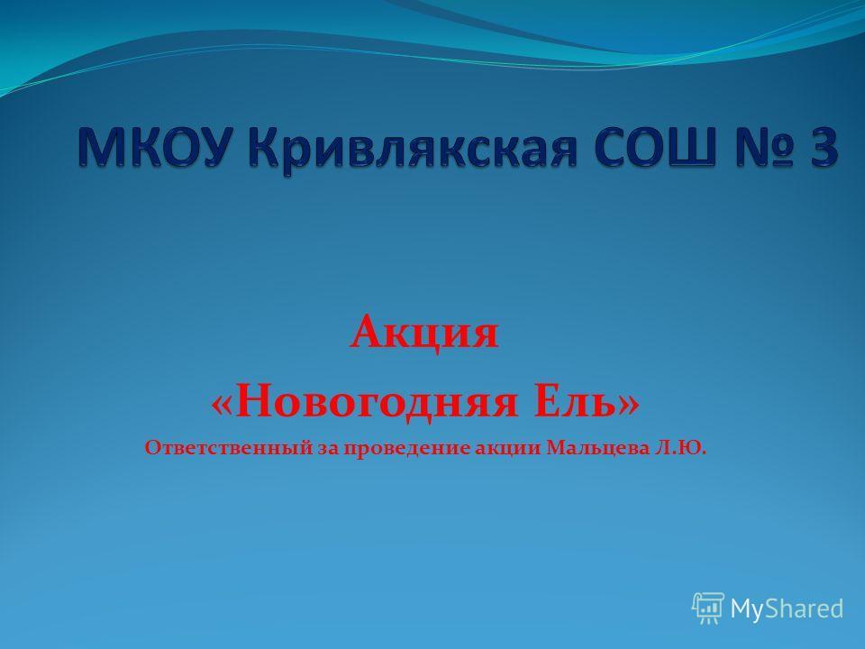 Акция «Новогодняя Ель» Ответственный за проведение акции Мальцева Л.Ю.