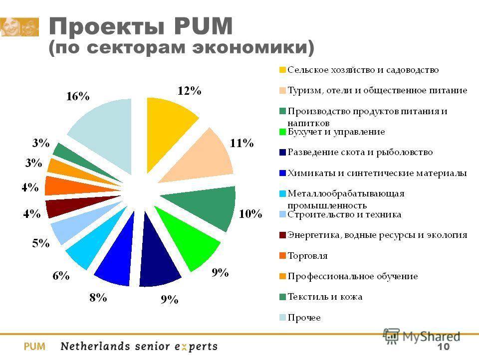10 Проекты PUM (по секторам экономики)