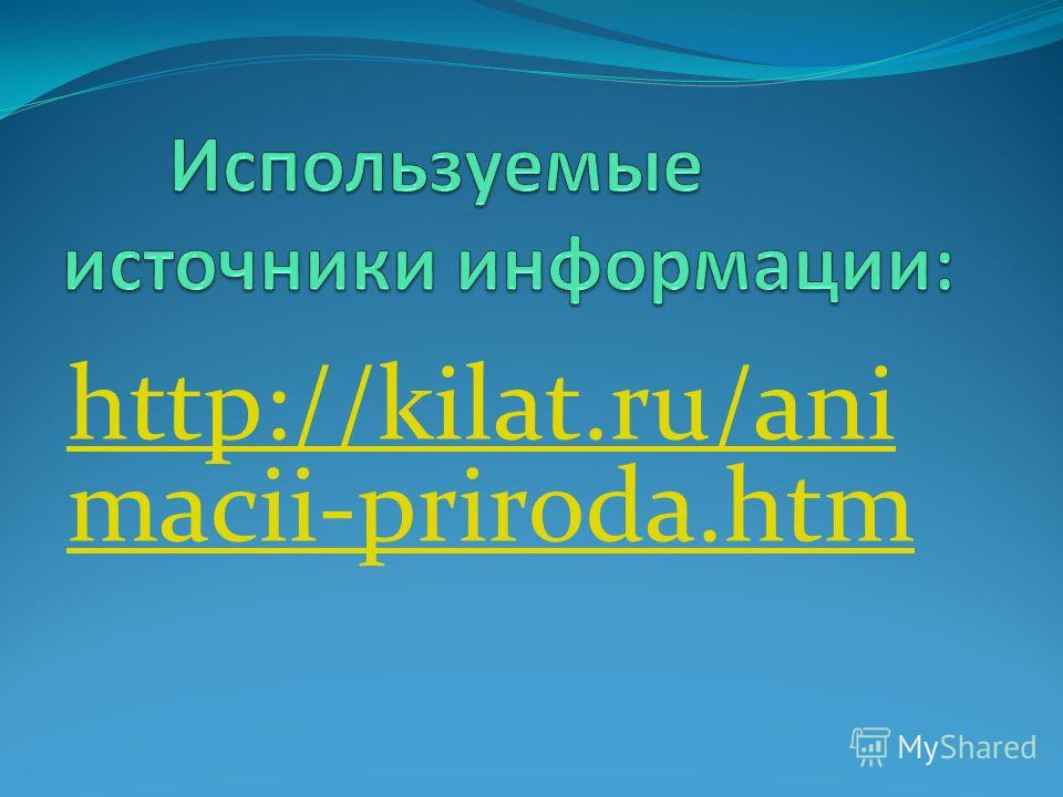 http://kilat.ru/ani macii-priroda.htm