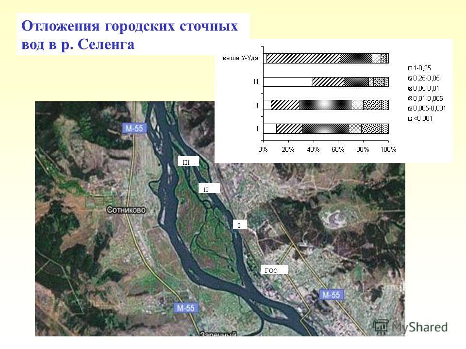 ГОС I II III Отложения городских сточных вод в р. Селенга
