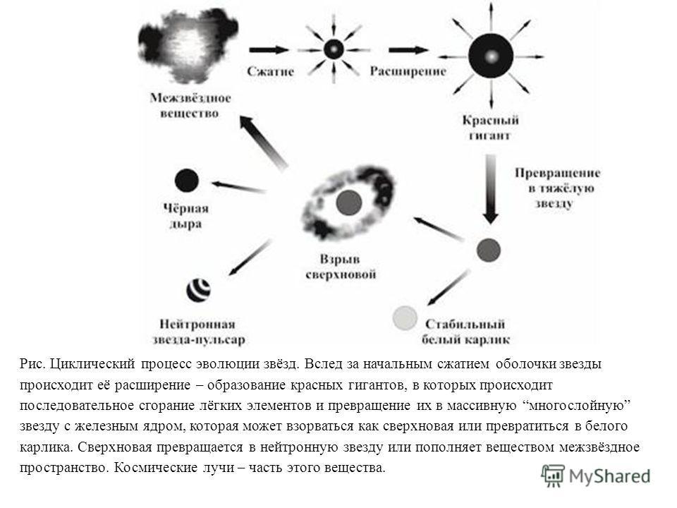Рис. Циклический процесс эволюции звёзд. Вслед за начальным сжатием оболочки звезды происходит её расширение – образование красных гигантов, в которых происходит последовательное сгорание лёгких элементов и превращение их в массивную многослойную зве