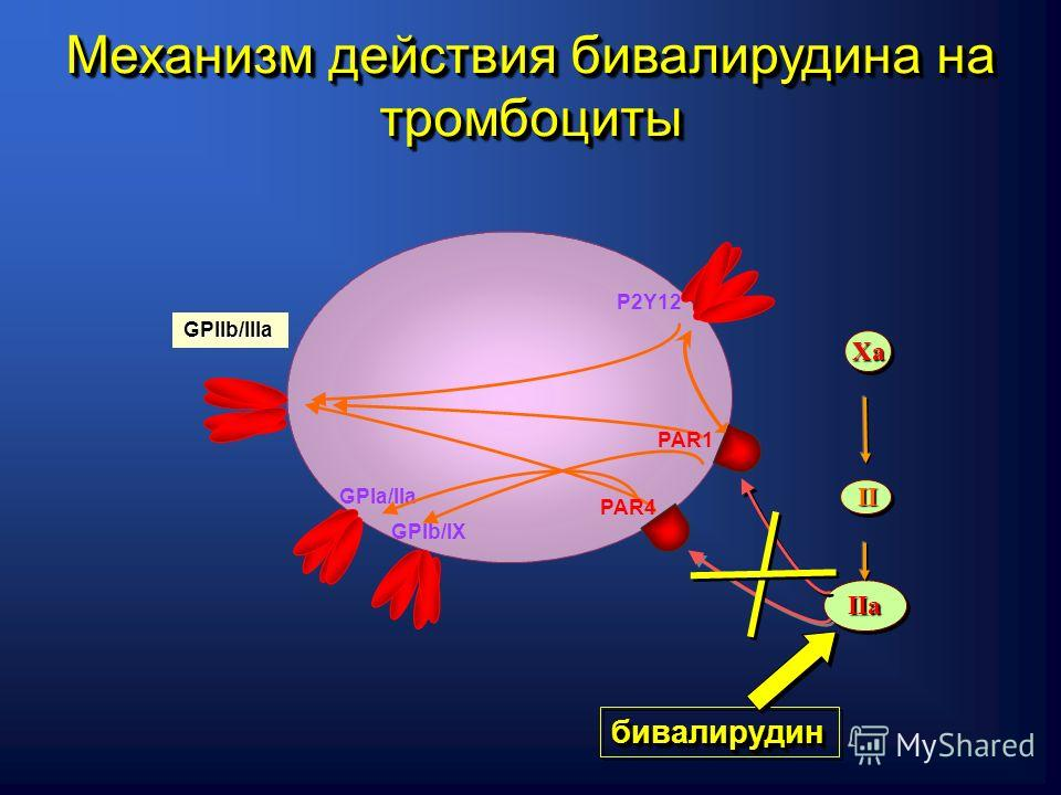 GPIa/IIa GPIb/IХ P2Y12 GPIIb/IIIa PAR1 PAR4 IIaIIa IIII ХaХaХaХa ХaХaХaХa бивалирудинбивалирудин Механизм действия бивалирудина на тромбоциты