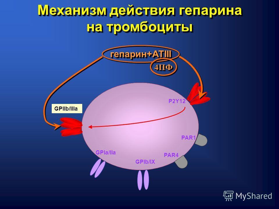 GPIa/IIa GPIb/IХ P2Y12 PAR4 PAR1 GPIIb/IIIa гепарин+АТIII Механизм действия гепарина на тромбоциты 4ПФ4ПФ