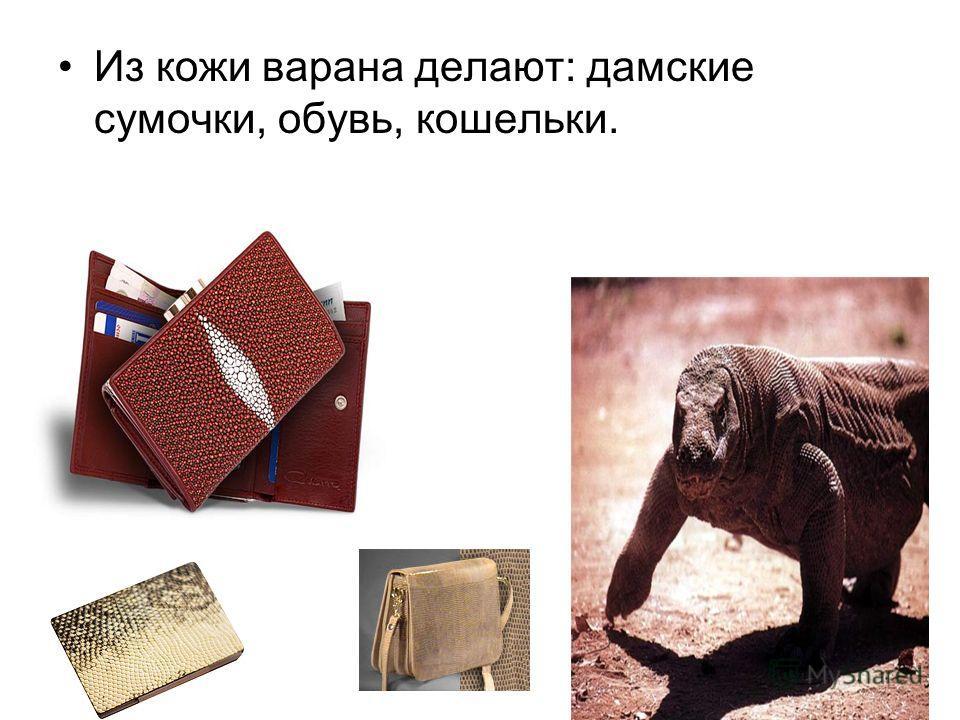 Из кожи варана делают: дамские сумочки, обувь, кошельки.