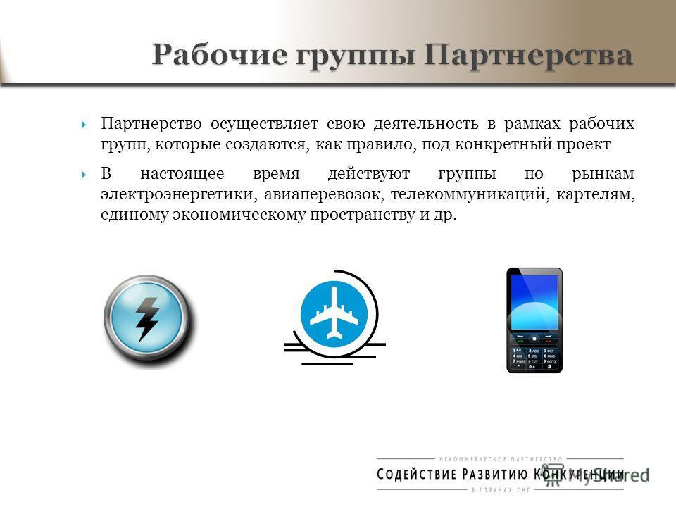 Партнерство осуществляет свою деятельность в рамках рабочих групп, которые создаются, как правило, под конкретный проект В настоящее время действуют группы по рынкам электроэнергетики, авиаперевозок, телекоммуникаций, картелям, единому экономическому