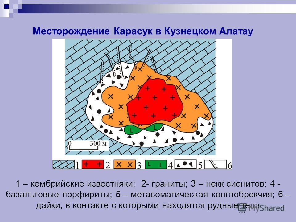 Месторождение Карасук в Кузнецком Алатау 1 – кембрийские известняки; 2- граниты; 3 – некк сиенитов; 4 - базальтовые порфириты; 5 – метасоматическая конглобрекчия; 6 – дайки, в контакте с которыми находятся рудные тела