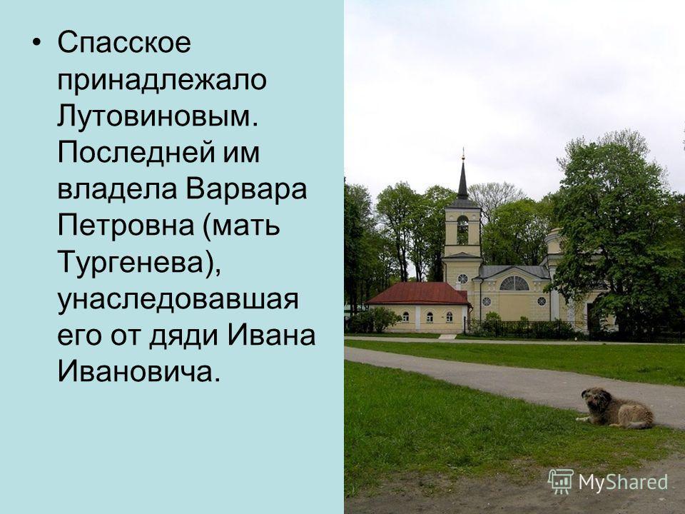 В доме Тургенева