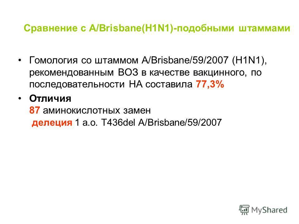 Сравнение с A/Brisbane(H1N1)-подобными штаммами Гомология со штаммом А/Brisbane/59/2007 (H1N1), рекомендованным ВОЗ в качестве вакцинного, по последовательности НА составила 77,3% Отличия 87 аминокислотных замен делеция 1 а.о. T436del A/Brisbane/59/2