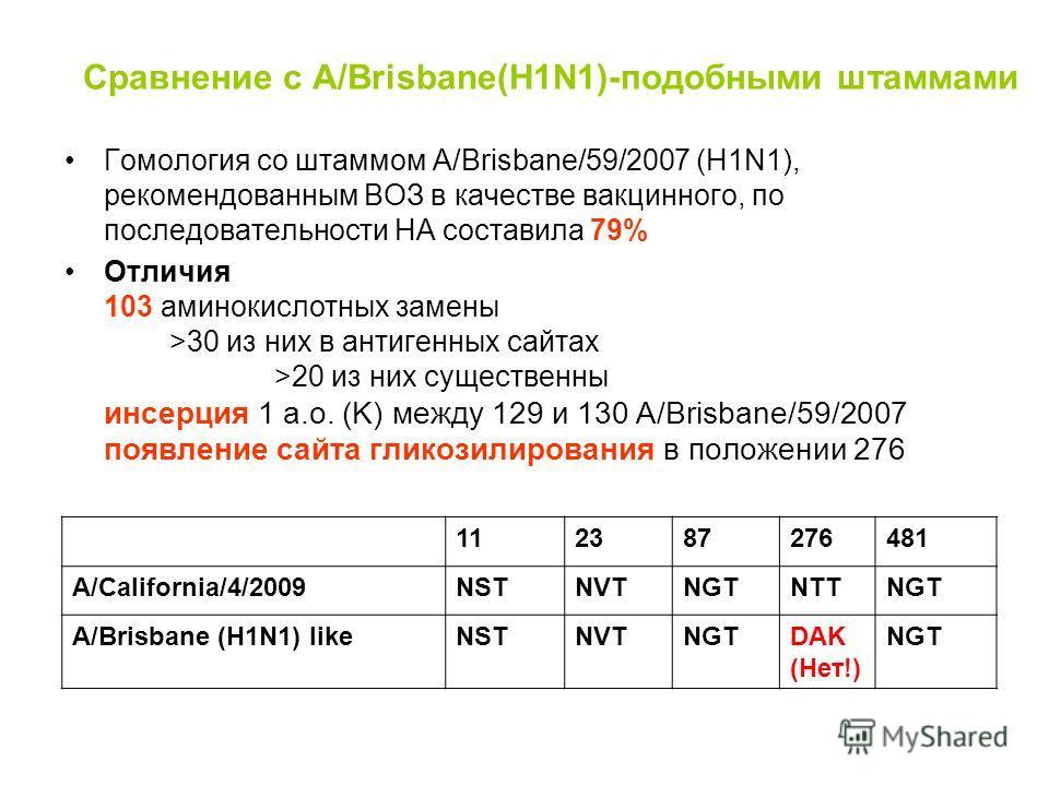 Сравнение с A/Brisbane(H1N1)-подобными штаммами Гомология со штаммом А/Brisbane/59/2007 (H1N1), рекомендованным ВОЗ в качестве вакцинного, по последовательности НА составила 79% Отличия 103 аминокислотных замены >30 из них в антигенных сайтах >20 из