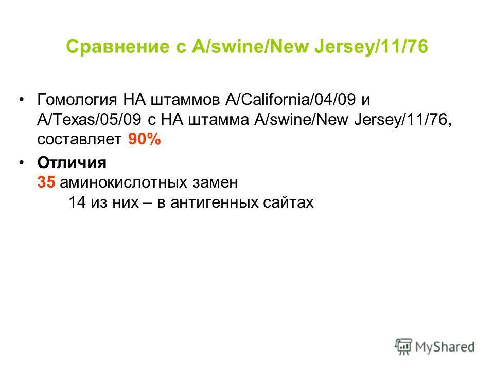 Сравнение с A/swine/New Jersey/11/76 Гомология HA штаммов А/California/04/09 и А/Texas/05/09 с HA штамма A/swine/New Jersey/11/76, составляет 90% Отличия 35 аминокислотных замен 14 из них – в антигенных сайтах