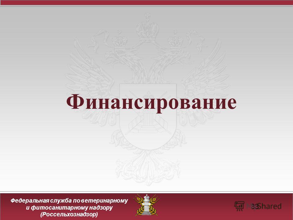 Федеральная служба по ветеринарному и фитосанитарному надзору (Россельхознадзор) Финансирование 33